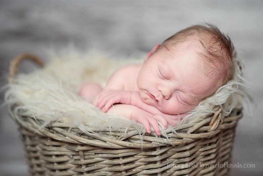 sesje zdjęciowe noworodków Wałbrzych, Świdnica, Legnica, zdjęcia noworodków Wałbrzych